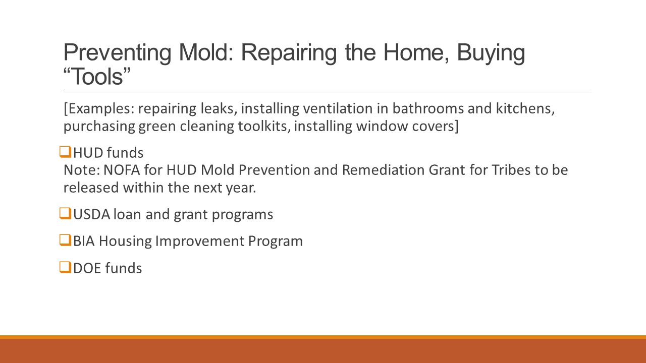 """Preventing Mold: Repairing the Home, Buying """"Tools"""" [Examples: repairing leaks, installing ventilation in bathrooms and kitchens, purchasing green cle"""