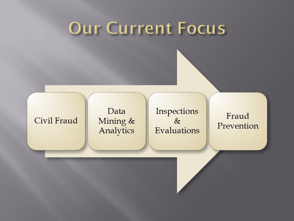 Civil Fraud Data Mining & Analytics Inspections & Evaluations Fraud Prevention
