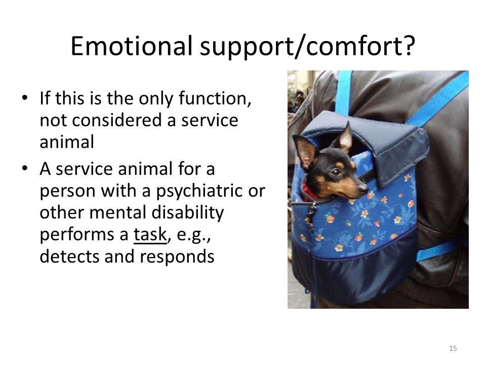 Emotional support/comfort.