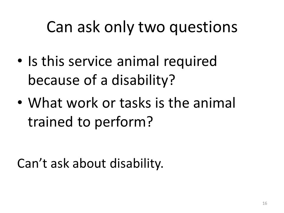 Can ask only two questions Is this service animal required because of a disability.