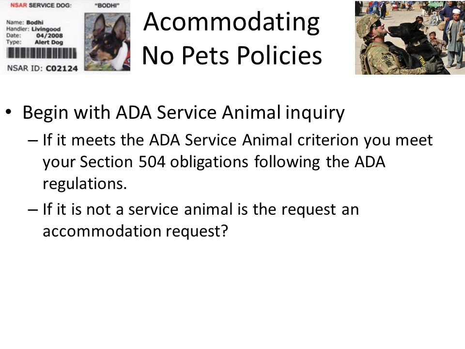Acommodating No Pets Policies Begin with ADA Service Animal inquiry – If it meets the ADA Service Animal criterion you meet your Section 504 obligations following the ADA regulations.