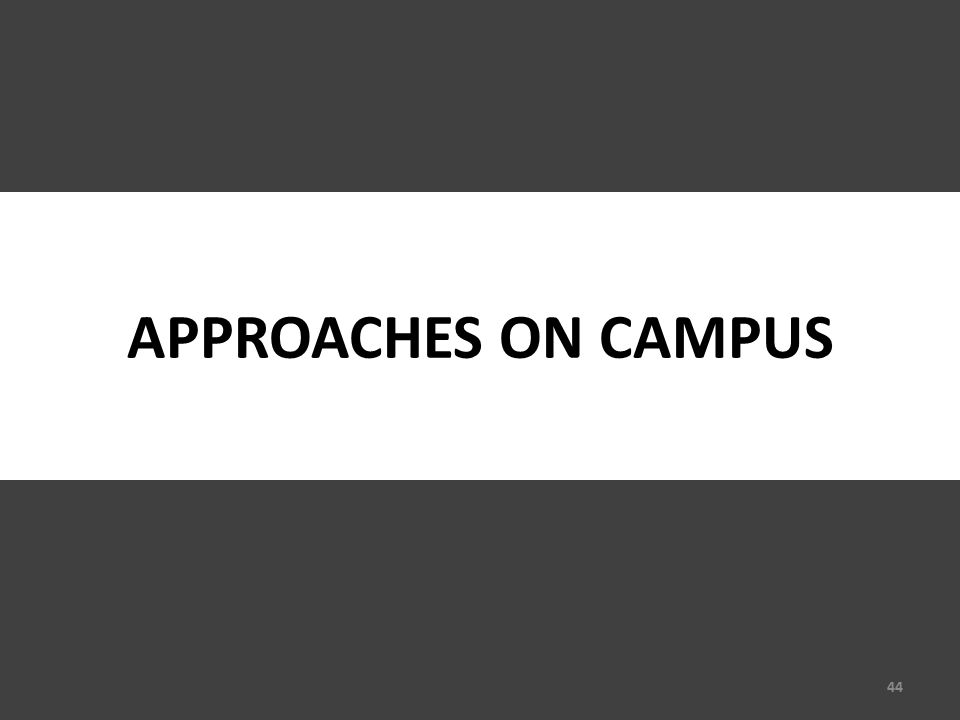 APPROACHES ON CAMPUS 44