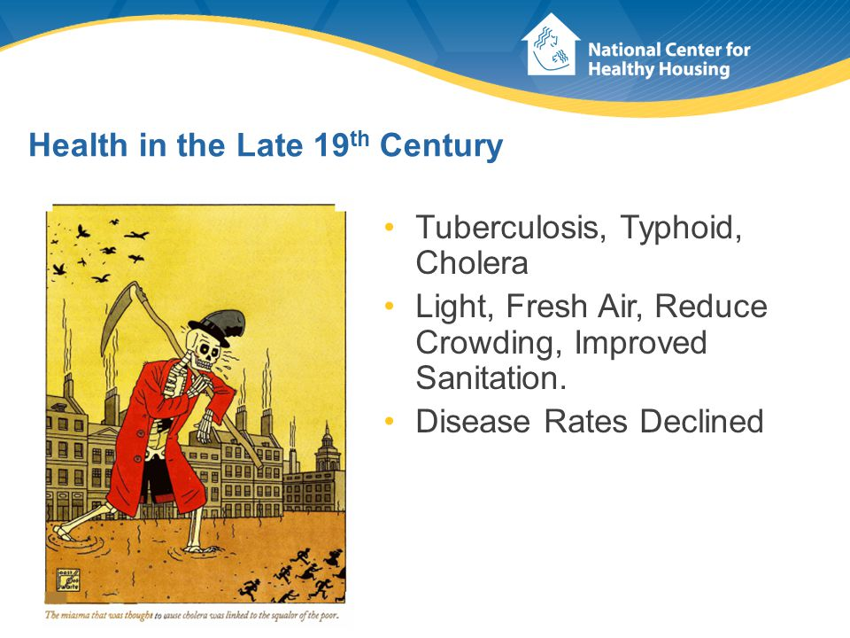 Health in the Late 19 th Century Tuberculosis, Typhoid, Cholera Light, Fresh Air, Reduce Crowding, Improved Sanitation. Disease Rates Declined
