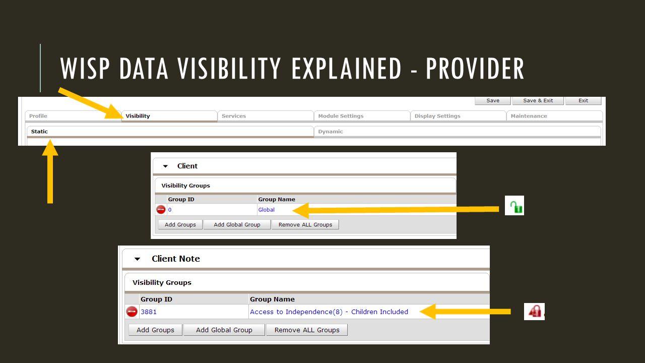 WISP DATA VISIBILITY EXPLAINED - PROVIDER
