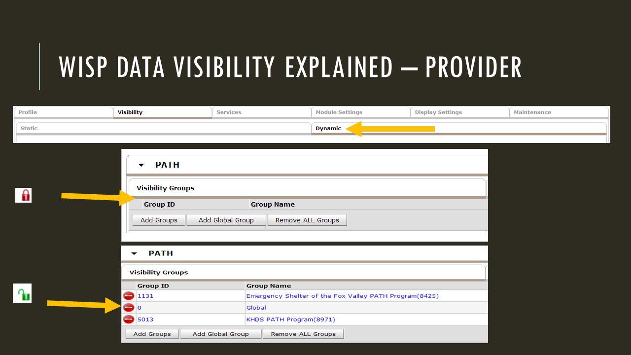 WISP DATA VISIBILITY EXPLAINED – PROVIDER