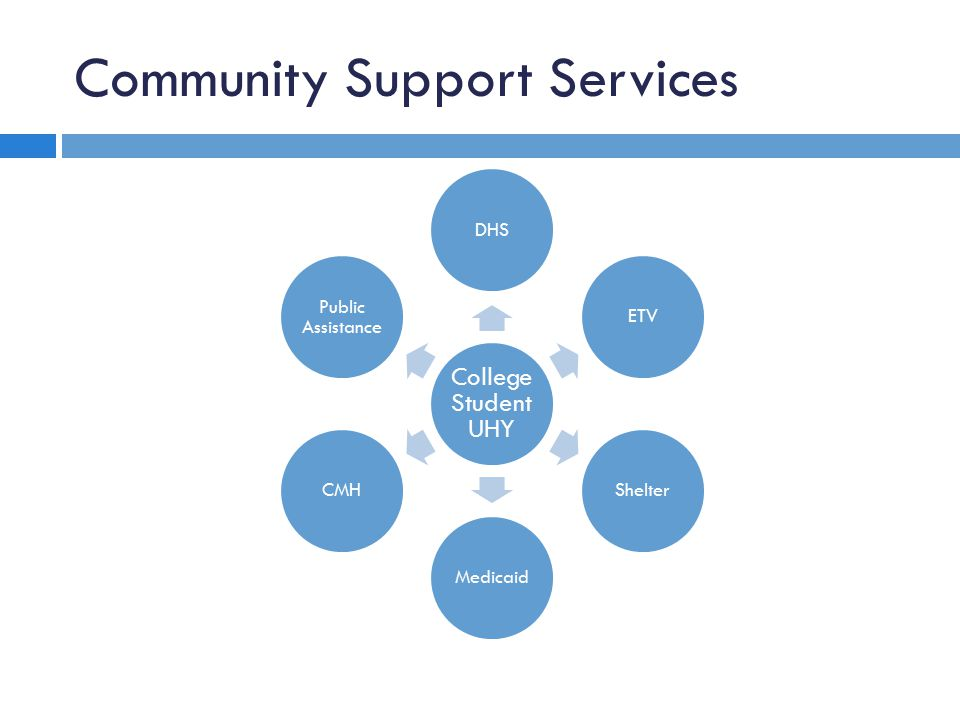 Community Support Services College Student UHY DHSETVShelterMedicaidCMH Public Assistance