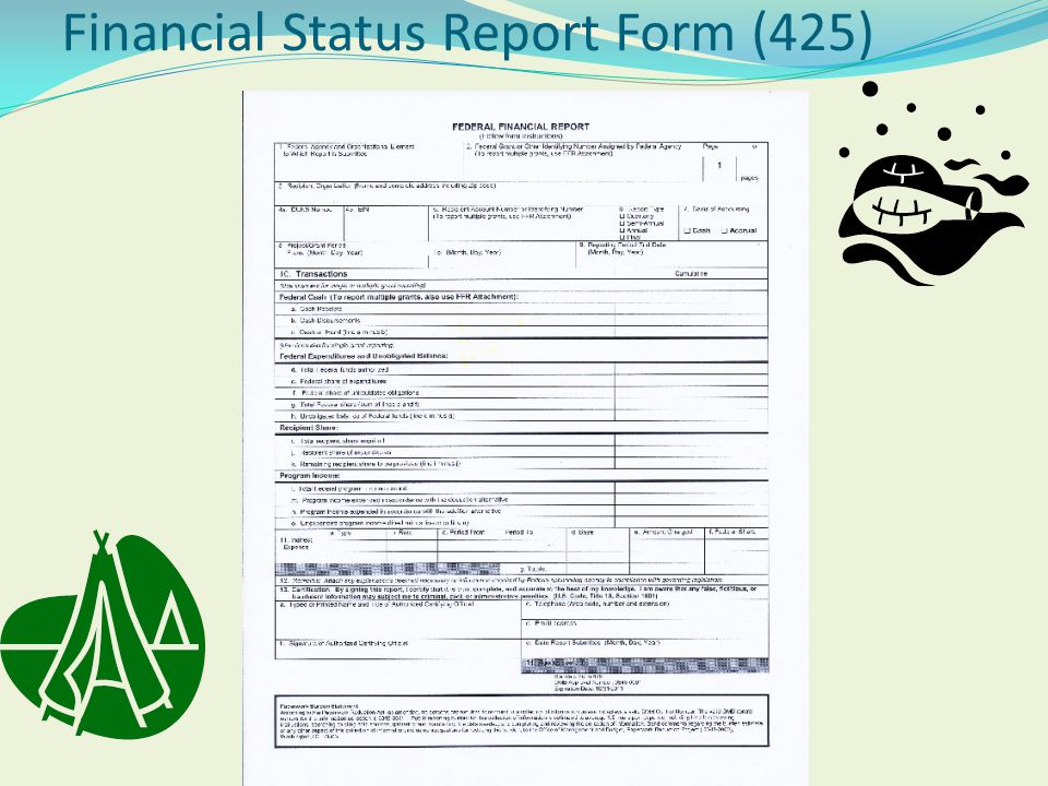 Financial Status Report Form (425)