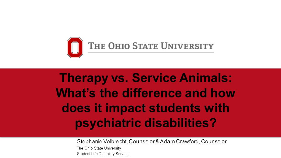 Therapy vs. Service Animals: What's the difference and how does it impact students with psychiatric disabilities? Stephanie Volbrecht, Counselor & Ada