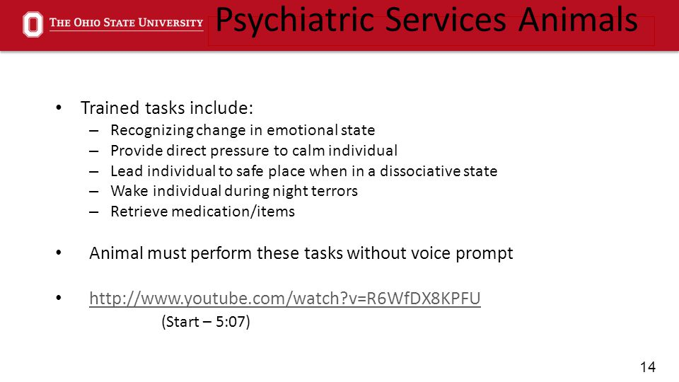 14 Trained tasks include: – Recognizing change in emotional state – Provide direct pressure to calm individual – Lead individual to safe place when in a dissociative state – Wake individual during night terrors – Retrieve medication/items Animal must perform these tasks without voice prompt http://www.youtube.com/watch v=R6WfDX8KPFU (Start – 5:07) Psychiatric Services Animals