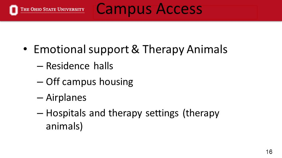 16 Emotional support & Therapy Animals – Residence halls – Off campus housing – Airplanes – Hospitals and therapy settings (therapy animals) Campus Access