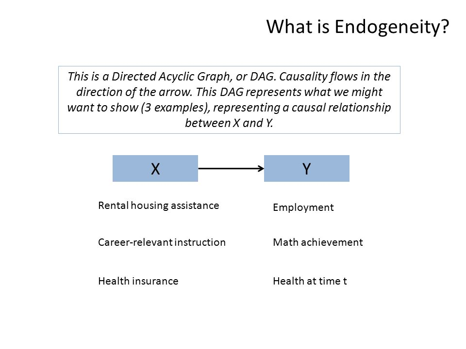 What is Endogeneity.