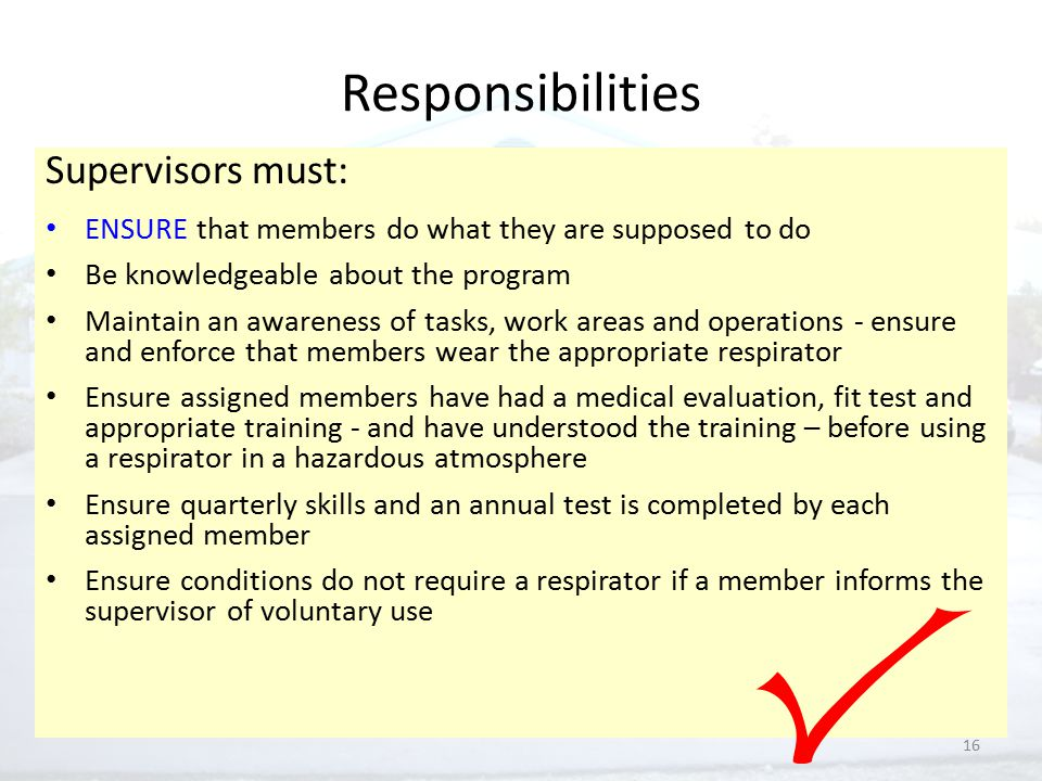 16 Responsibilities Supervisors must: ENSURE that members do what they are supposed to do Be knowledgeable about the program Maintain an awareness of