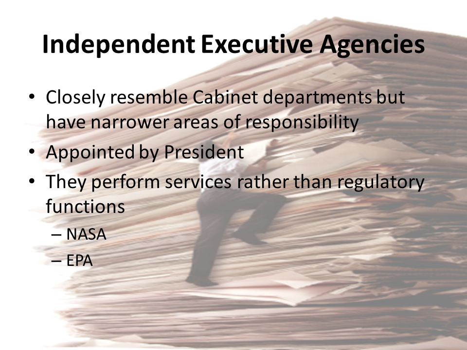 Independent Executive Agencies Closely resemble Cabinet departments but have narrower areas of responsibility Appointed by President They perform serv