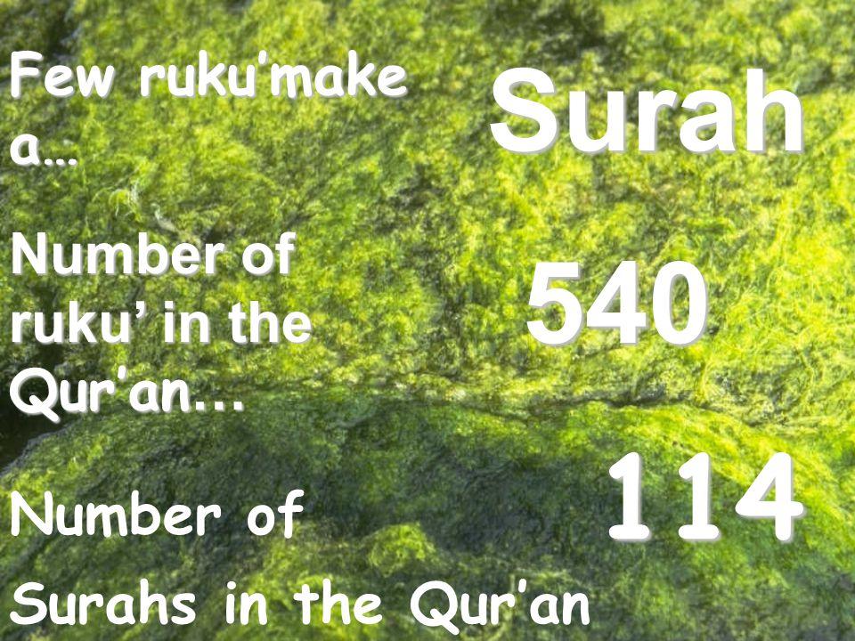 Few ruku'make a… Number of ruku' in the Qur'an … Surah 540 Number of Surahs in the Qur'an 114