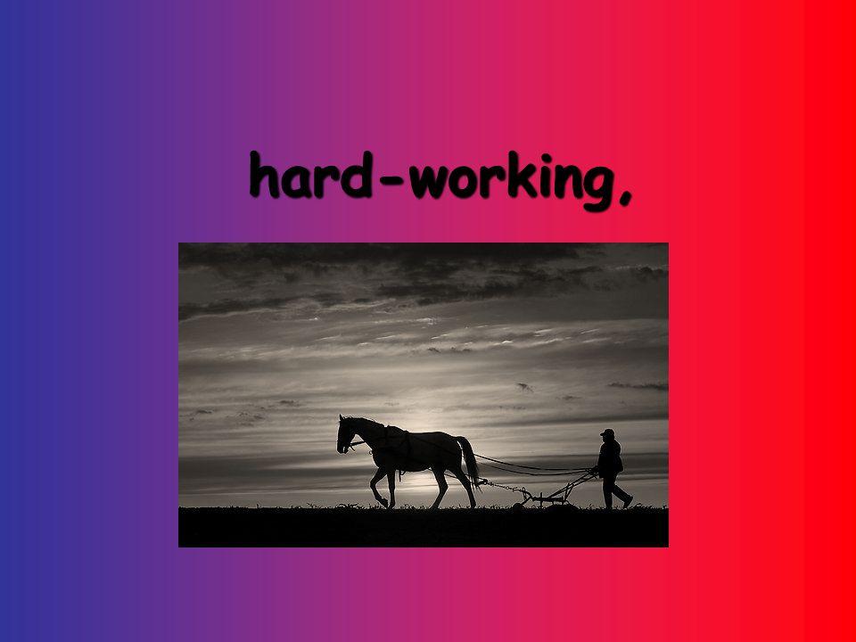hard-working, hard-working,