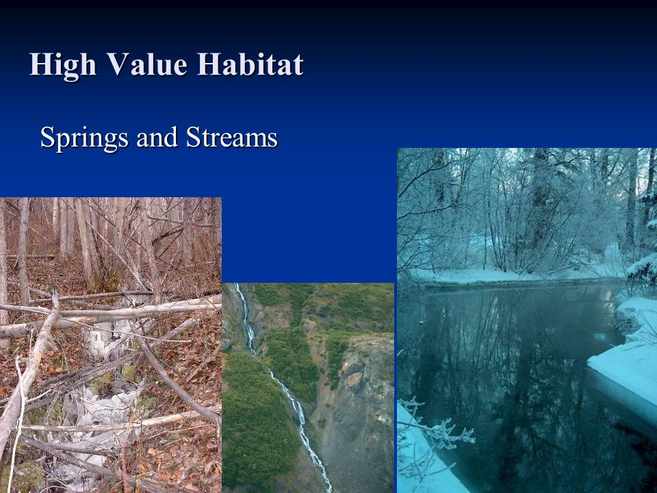 High Value Habitat Springs and Streams
