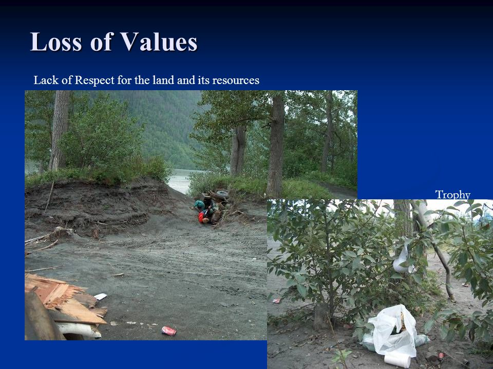 Loss of Values Lack of Respect for the land and its resources Trophy