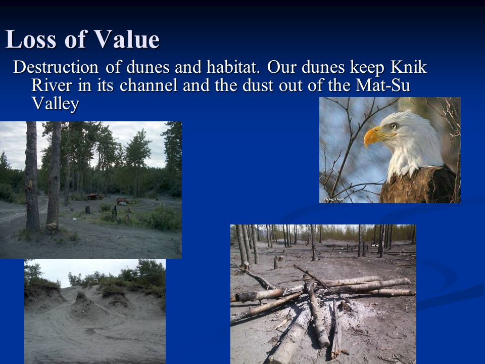 Loss of Value Destruction of dunes and habitat.