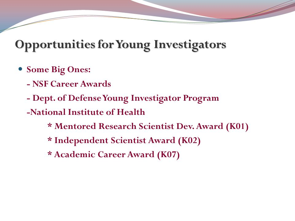 Opportunities for Young Investigators Some Big Ones: - NSF Career Awards - Dept.