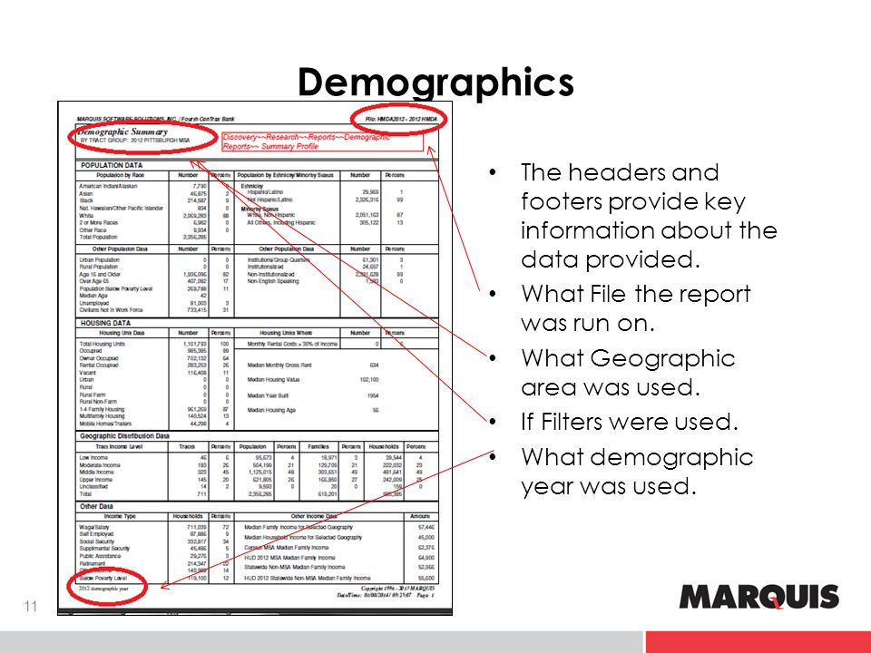 Demographics The headers and footers provide key information about the data provided.