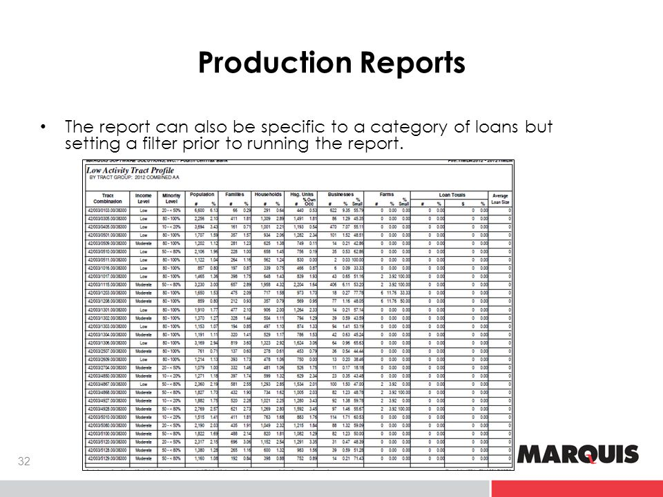 Production Reports The report can also be specific to a category of loans but setting a filter prior to running the report.
