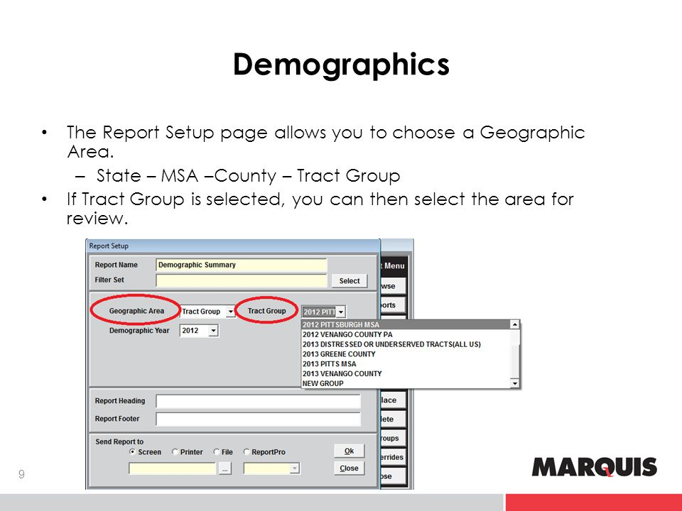 Demographics The Report Setup page allows you to choose a Geographic Area.