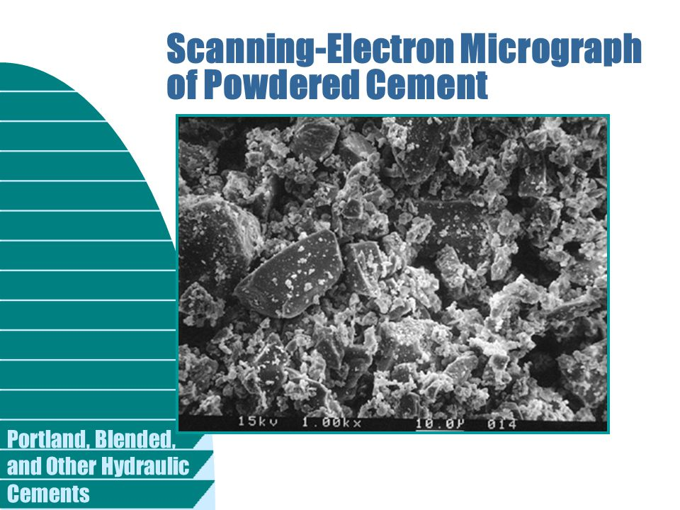 Scanning-Electron Micrograph of Powdered Cement