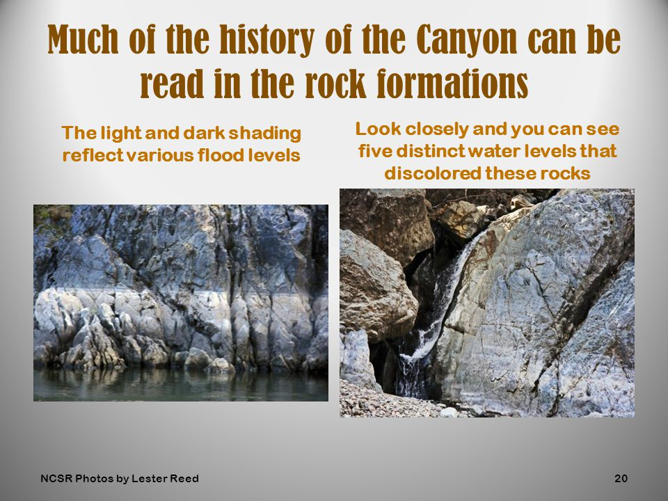 The light and dark shading reflect various flood levels Look closely and you can see five distinct water levels that discolored these rocks Much of the history of the Canyon can be read in the rock formations NCSR Photos by Lester Reed20