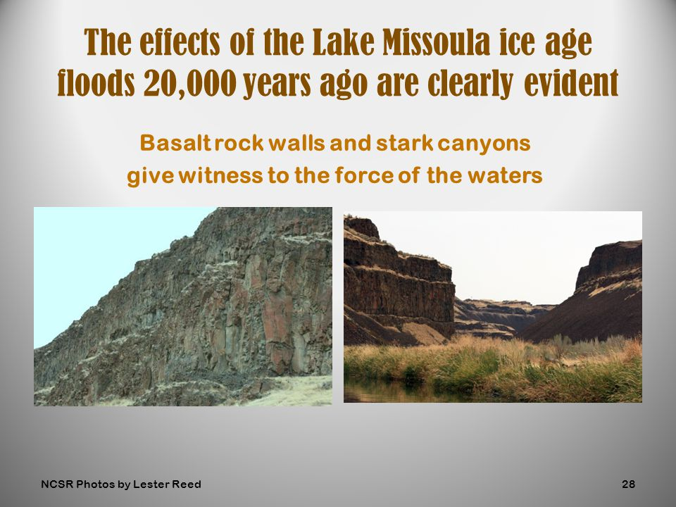 Basalt rock walls and stark canyons give witness to the force of the waters The effects of the Lake Missoula ice age floods 20,000 years ago are clearly evident NCSR Photos by Lester Reed28