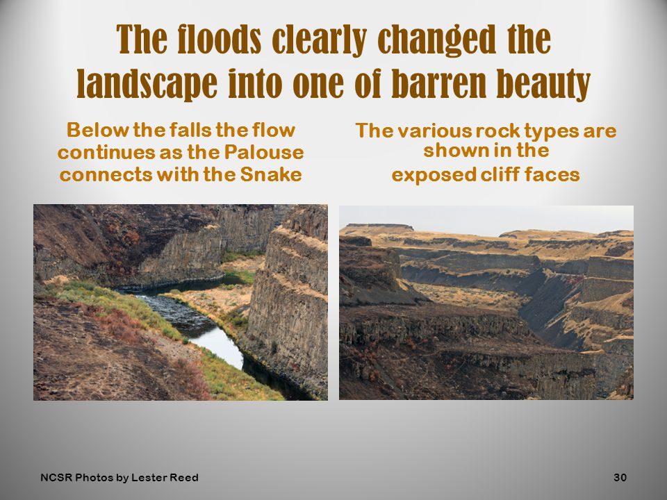 Below the falls the flow continues as the Palouse connects with the Snake The various rock types are shown in the exposed cliff faces The floods clearly changed the landscape into one of barren beauty NCSR Photos by Lester Reed30