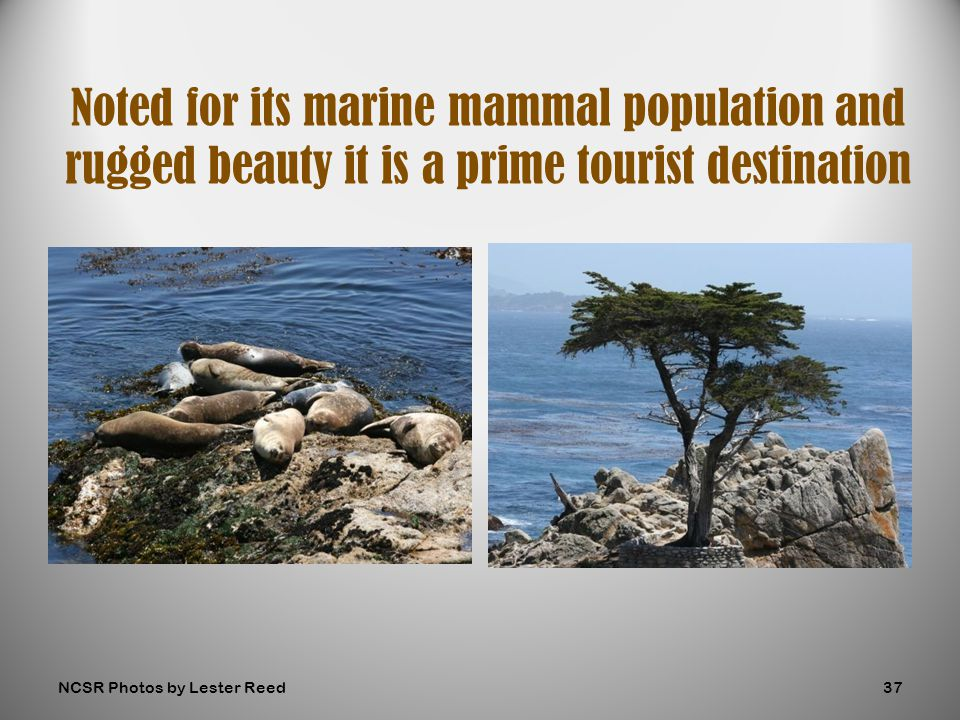 Noted for its marine mammal population and rugged beauty it is a prime tourist destination NCSR Photos by Lester Reed37
