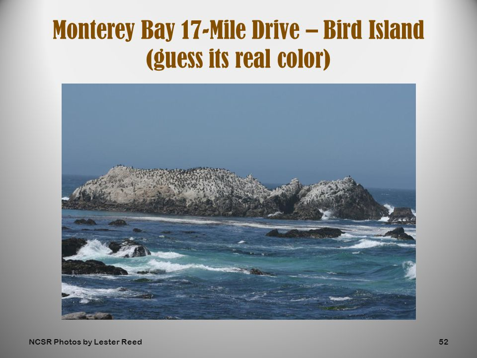 Monterey Bay 17-Mile Drive – Bird Island (guess its real color) NCSR Photos by Lester Reed52