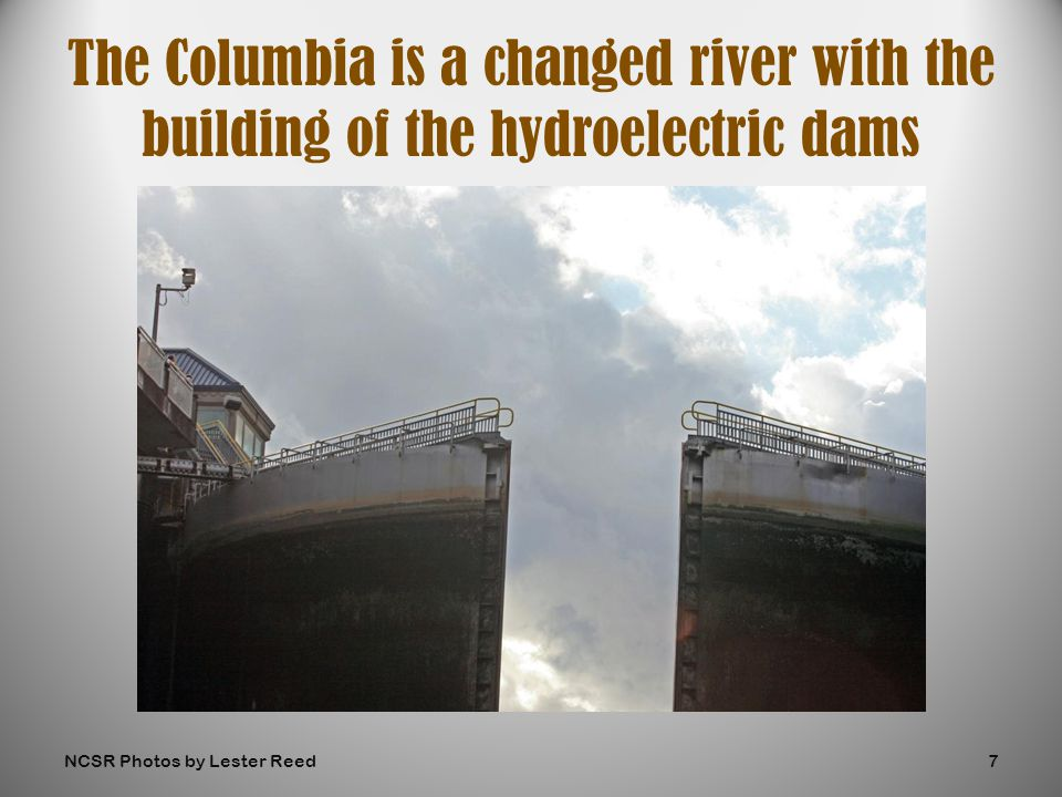 The Columbia is a changed river with the building of the hydroelectric dams NCSR Photos by Lester Reed7