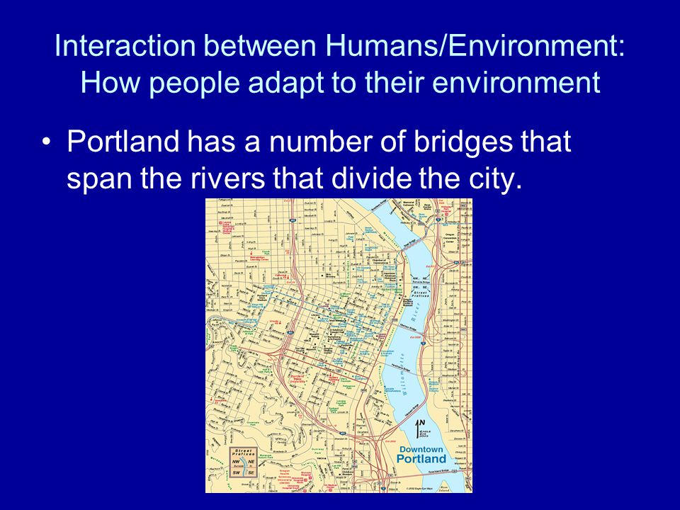 Interaction between Humans/Environment: How people adapt to their environment Portland has a number of bridges that span the rivers that divide the ci
