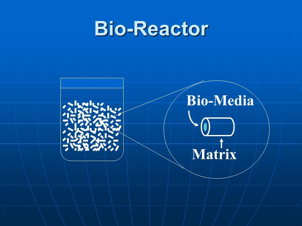 Bio-Reactor Matrix Bio-Media