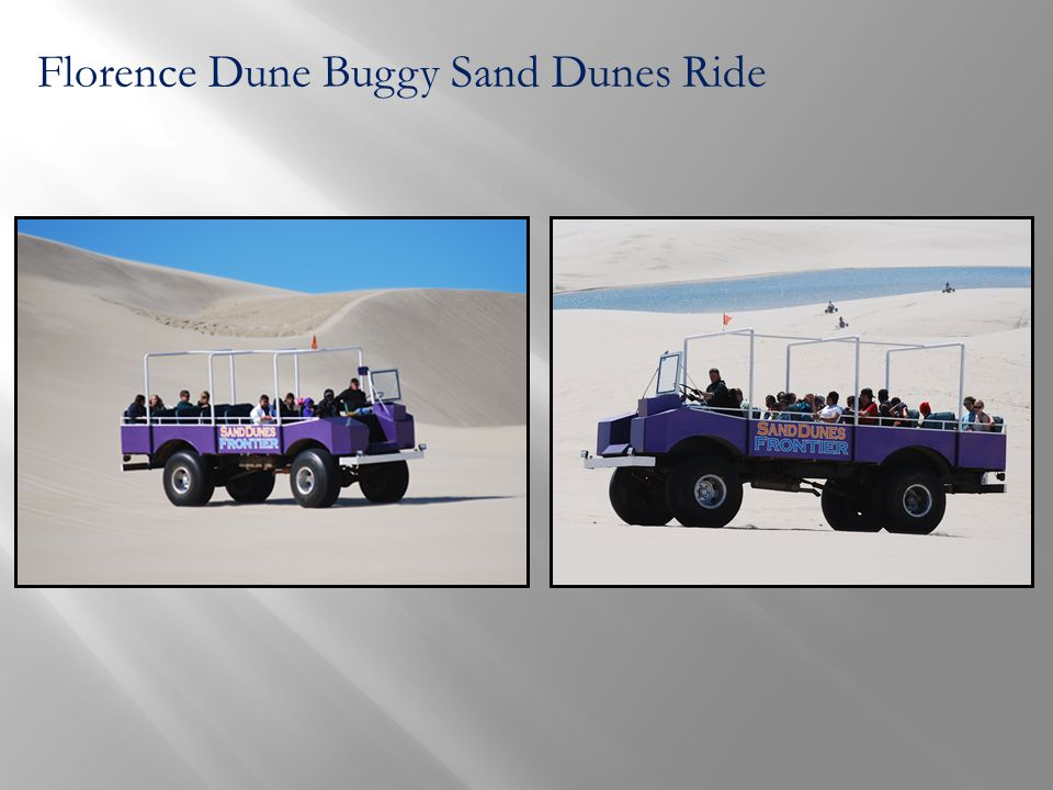 Florence Dune Buggy Sand Dunes Ride