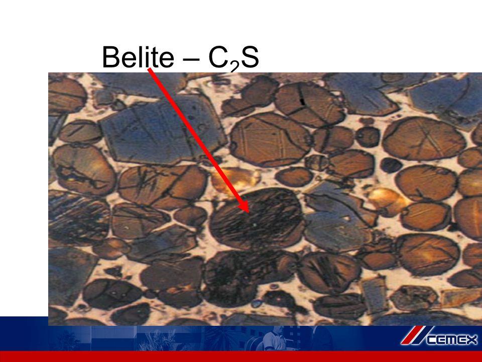 Belite – C 2 S