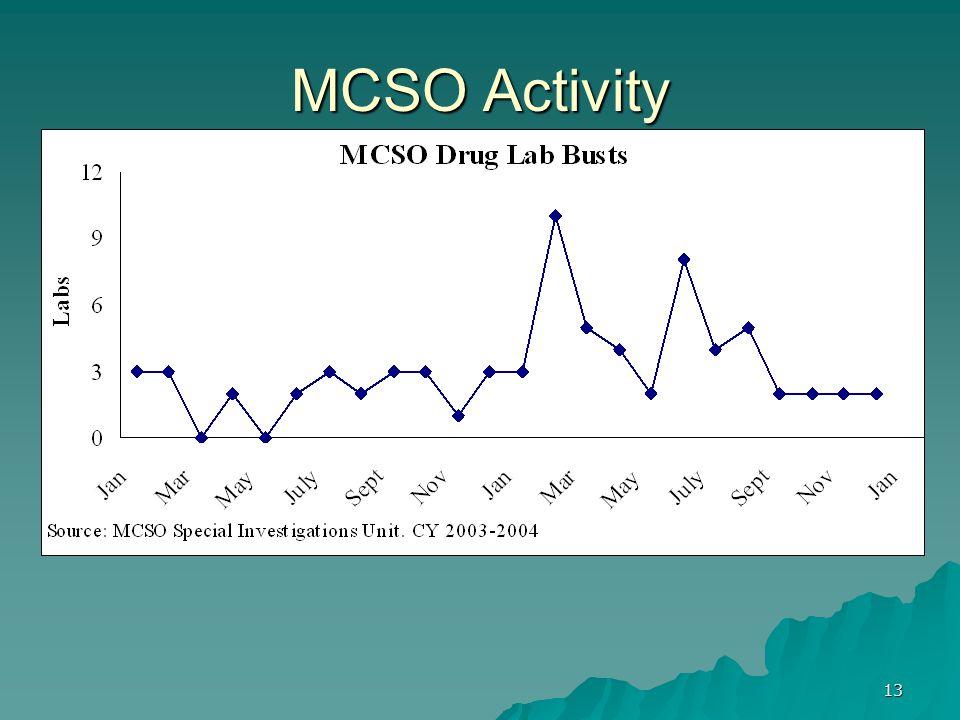 13 MCSO Activity