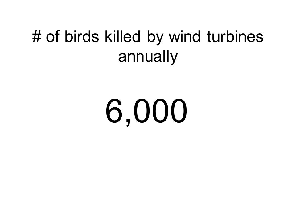 # of birds killed by wind turbines annually 6,000