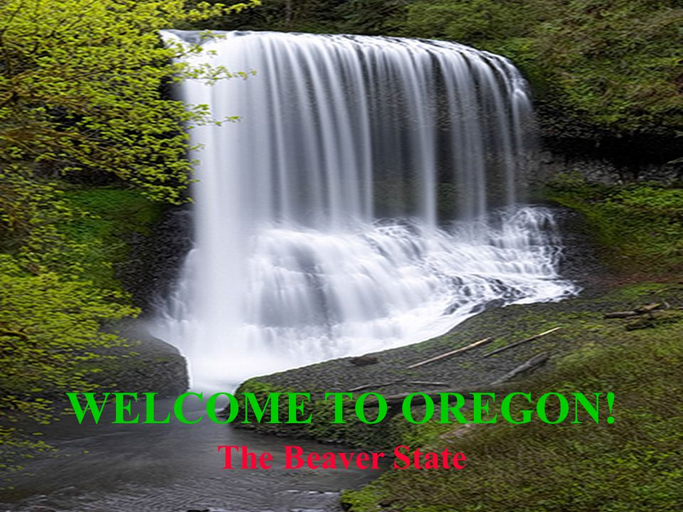 Welcome to Oregon! WELCOME TO OREGON! The Beaver State