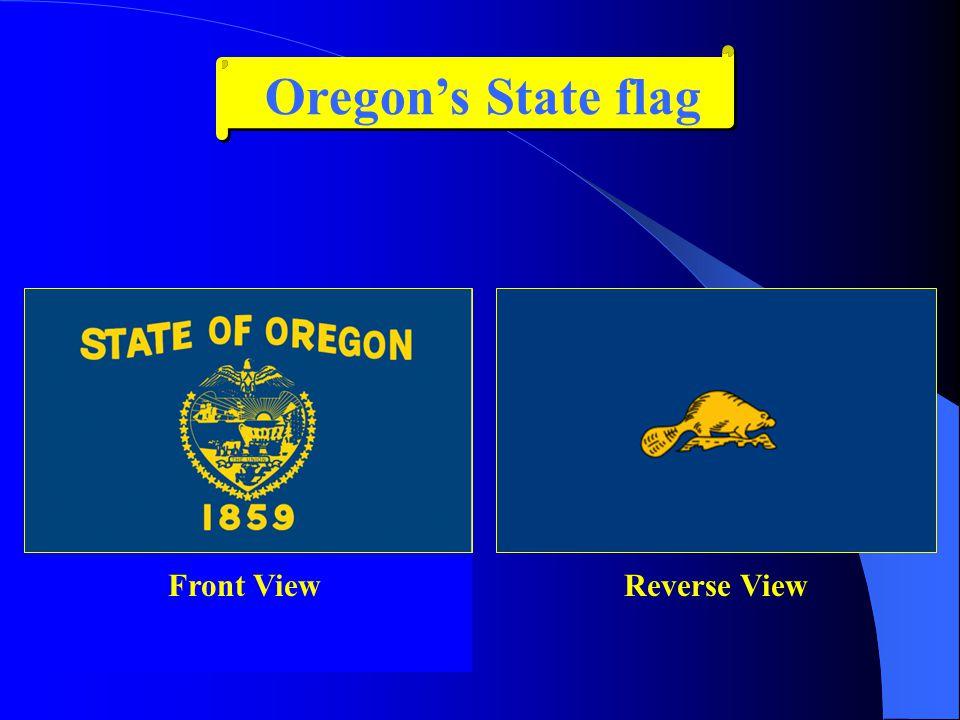 Oregon has seven main regions: 1.The Coast 2.The Willamette Valley 3.Portland 4.Mount Hood/Columbia River Gorge 5.Southern Oregon