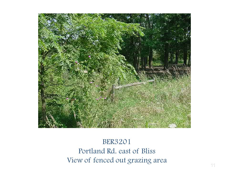11 BER3201 Portland Rd. east of Bliss View of fenced out grazing area