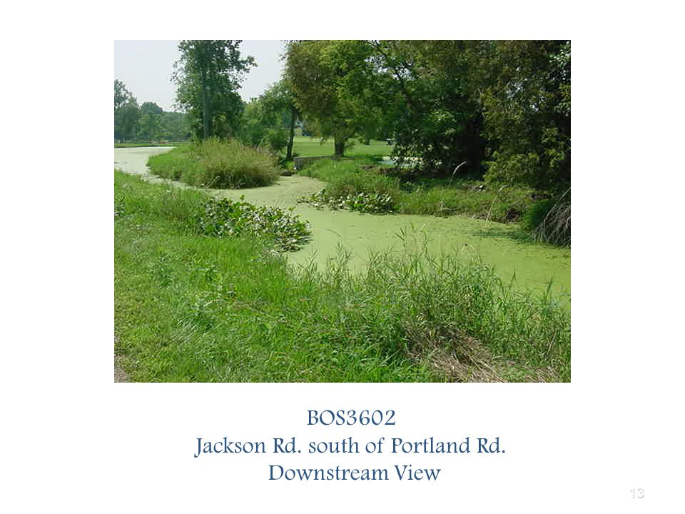 13 BOS3602 Jackson Rd. south of Portland Rd. Downstream View
