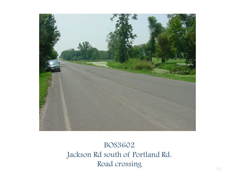 14 BOS3602 Jackson Rd south of Portland Rd. Road crossing