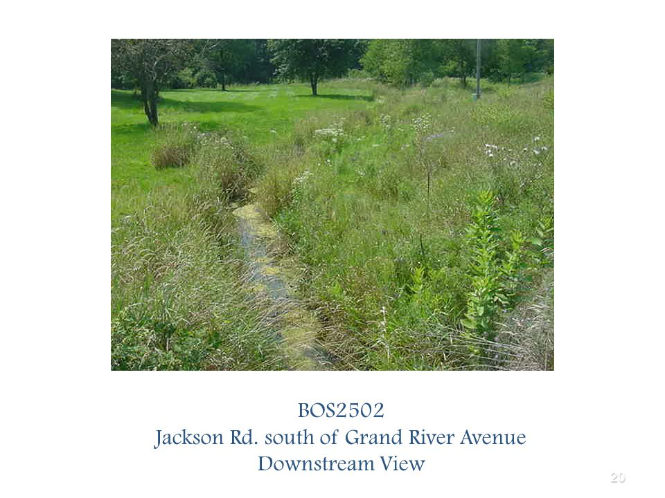 20 BOS2502 Jackson Rd. south of Grand River Avenue Downstream View