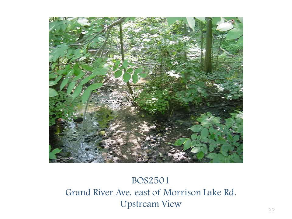 22 BOS2501 Grand River Ave. east of Morrison Lake Rd. Upstream View