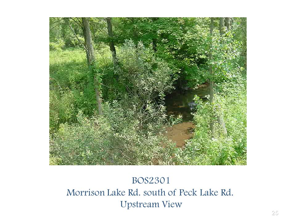 25 BOS2301 Morrison Lake Rd. south of Peck Lake Rd. Upstream View