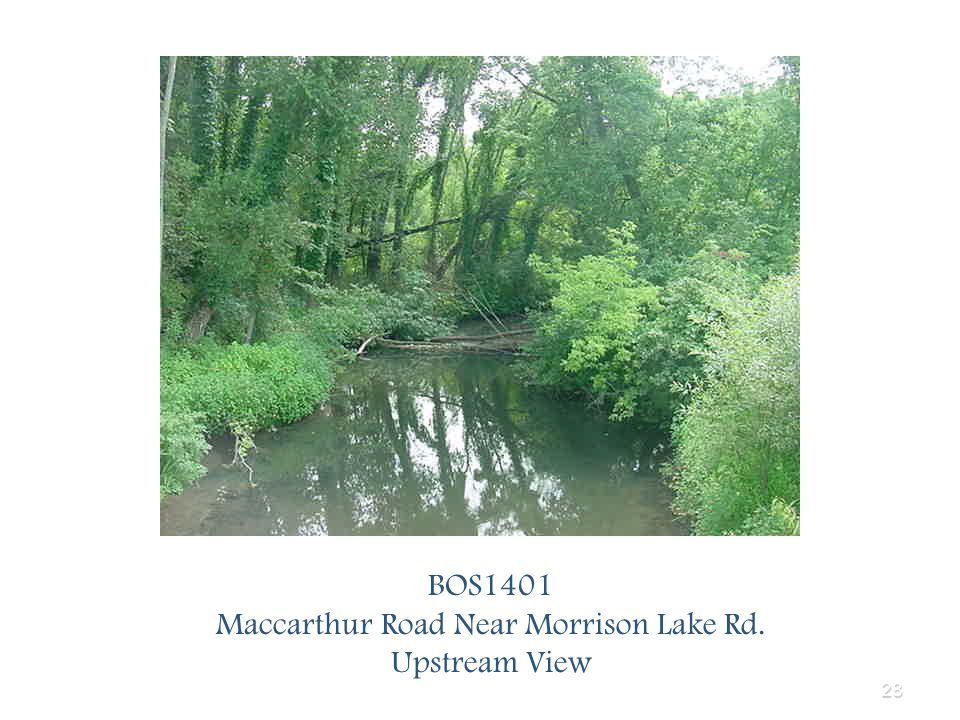 28 BOS1401 Maccarthur Road Near Morrison Lake Rd. Upstream View