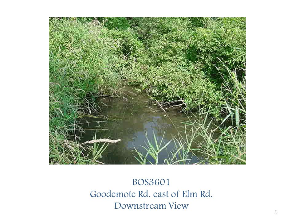 6 BOS3601 Goodemote Rd. east of Elm Rd. Downstream View