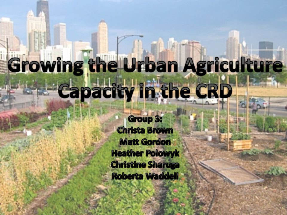 4 – Future Recommendations to Support Urban Agriculture in the CRD Rooftop Gardens Under utilized space Benefits: food security, healthy eating, energy savings Education Programs Help create demand for local food compete economically Learn and share latest technologies Mandatory Use of Local Food in Large Public and Community Institutions Currently places like schools and hospitals are an untapped resource for Supporting local food Health benefits, and Healthy eating education